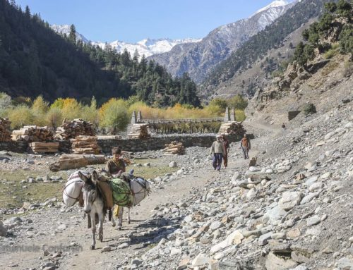 In Karakorum, following the traces of the Taliban and Alexander the Great